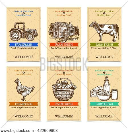 Six Vertical Farm Tags Welcome Banners With Healthy Food Farm Animals Tractor Farmhouse With Textura