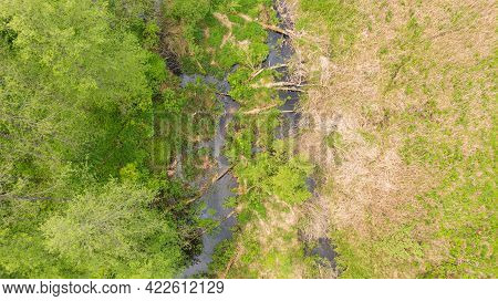 Forest River Lesna Nearby Hajnowka City With Dead Tree Log Lying Over, Bialowieza Forest, Poland, Eu
