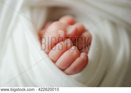 Baby Feet. The Tiny Foot Of A Newborn In Soft Selective Focus. Image Of The Soles Of The Feet.