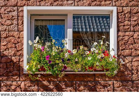 View Of Colorful Flowers Of Creepers On The Window Sill Of A Beautifully Decorated Window Of A House