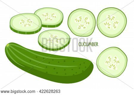 Cucumber. Whole Cucumber And Chopped Pieces. Fresh Farm Vegetables For Diet. Ingredients For Cooking