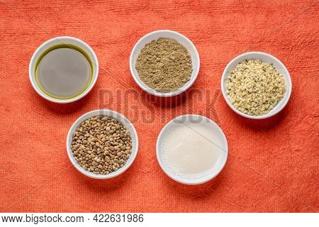 collection of hemp seed products: hearts, protein powder, milk and oil in small white bowls against textured orange paper, superfood concept