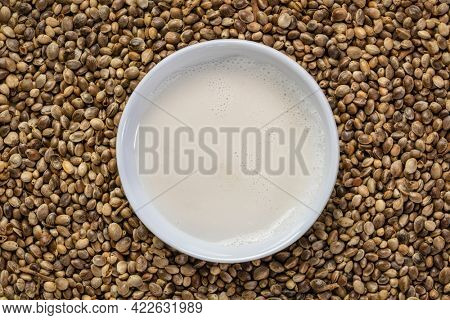 hemp seed milk in a small ceramic bowl against a background of dry hemp seeds, alternative milk concept