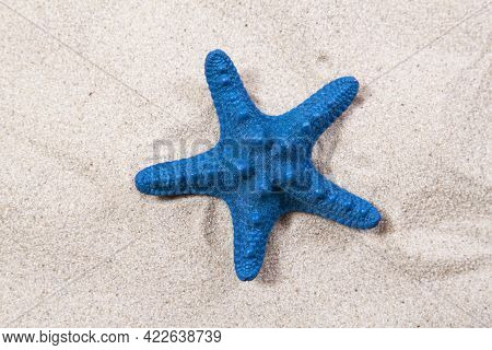 Blue Starfish On The Sand Close-up Top View. Starfish On The Beach. Beach Summer Background With San