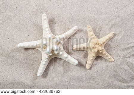 Two Starfish On The Sand Close-up Top View. Starfish On The Beach. Beach Summer Background With Sand