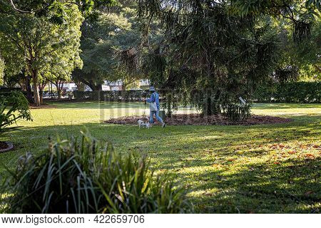 Mackay, Queensland, Australia - June 2021: Woman Walking Her Dog In The Botanic Gardens On A Bright
