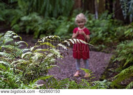 Mackay, Queensland, Australia - June 2021: A Young Girl Looking At Ferns In The Local Botanic Garden