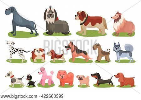 Purebred Dogs Or Canine With Chow-chow And Pugdog Standing On Green Lawn Vector Set