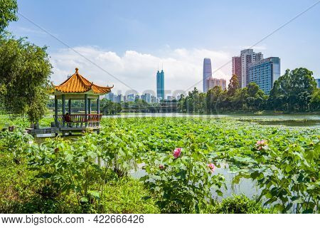 Honghu Park in Shenzhen,city skyline landscape with beautiful lake and Chinese pavilion.
