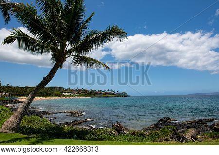 Landscape Tranquil Beach. Hawaii Background, Tropical Hawaiian Paradise.