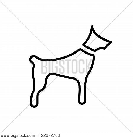 Dog Template Black Line Icon. Dog Silhouette. Home Animal Vet Concept. Trendy Flat Isolated Symbol S