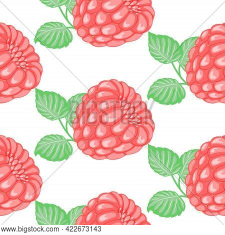 Vector Pattern Of Pink Raspberries With Green Leaves On A White Background. Abstraction With Raspber