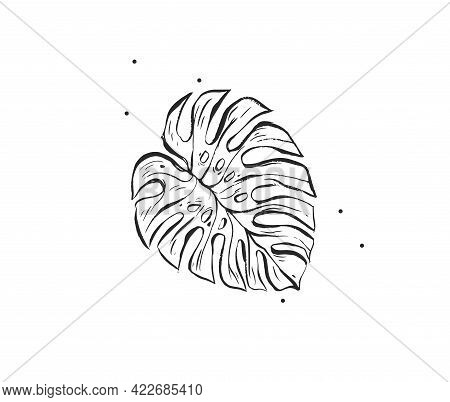 Hand Drawn Vector Abstract Stock Graphic Illustration With Logo Element Of Tropical, Black Exotic Pa