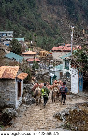 Pack Horses In Mountain Village