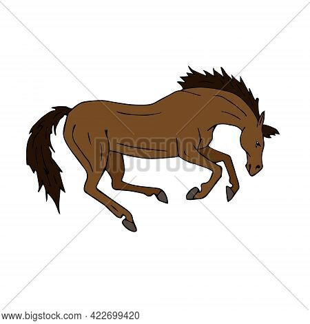 Vector Hand Drawn Doodle Sketch Colored Kicking Horse Isolated On White Background