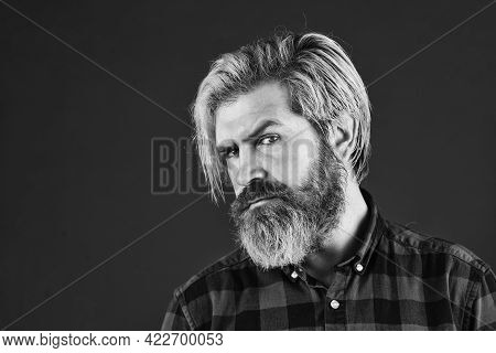 Mature Hipster With Beard. Brutal Caucasian Hipster With Moustache. Male Barber Care. Bearded Man Dy