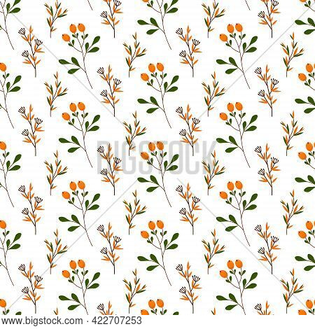 Seamless Pattern With Berries And Herbs. Vector Illustration Isolated On White Background. For Print