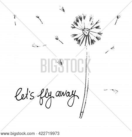 Lets Fly Away Vector Card. Hand Drawn Illustration Of Dandelion With Seeds Blowing In The Wind
