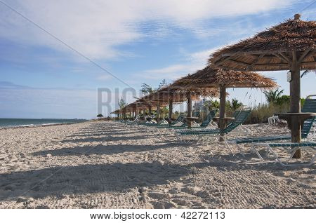 Beach Parasols And Sunchairs