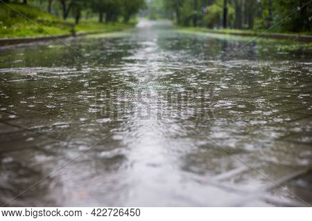 Raindrops Close-up. Circles On The Water From Raindrops.