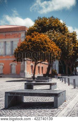 A Vertical Outdoor Shot With A Shallow Depth Of Field And A Selective Focus On A Concrete Bench, Fir