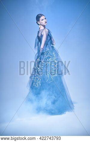 Fashion and beauty concept. Beautiful female ballet dancer  dancing in a luxury evening dress. Ballet show. Full length studio portrait.