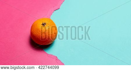 Close-up Of Orange Fruit On Cyan Background In Hole Of Torn Paper Of Pink Color. Panoramic Banner Vi