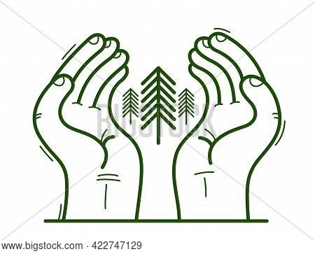 Two Hands With Pine Trees Protecting And Showing Care Vector Flat Style Illustration Isolated On Whi