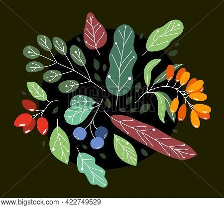Wild Berries Fresh And Ripe Tasty Healthy Food With Leaves Vector Flat Style Illustration Over Dark