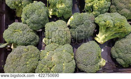 Macro Photo Green Fresh Vegetable Broccoli. Fresh Green Broccoli On A Black Stone Table.broccoli Veg