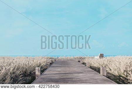 Old Wooden Terrace With Blue Sky And Sea View 3d Render,wood Chair On The Terrace Surrounded By Mead
