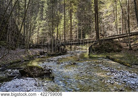 Velky Sokol Gorge, Slovak Paradise National Park. Seasonal Natural Scene.