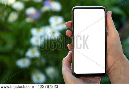 smartphone blank screen in hand with modern frameless design on nature background