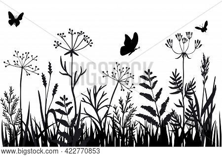 Black Silhouettes Of Grass, Flowers And Herbs Isolated On White Background. Hand Drawn Sketch Flower