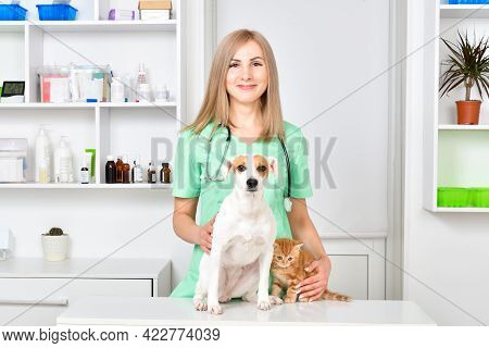 Smiling Veterinarian With Jack Russell Terrier Dog And Kitten Scottish Straight