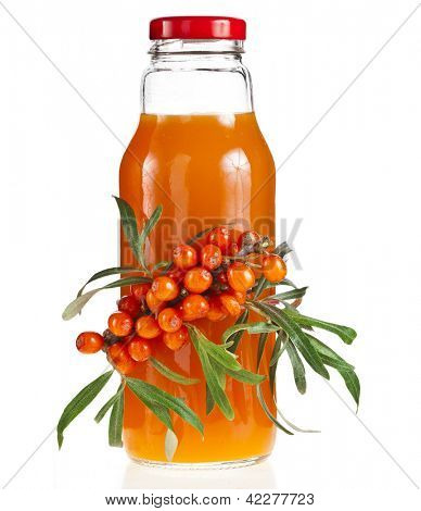 sea buckthorn sallow thorn berries juice on the bottle isolated on white background