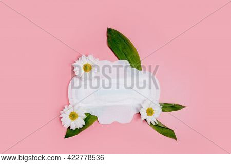 Floral Clean Sanitary Pad, Hygiene Concept, Women Products, Menstrual Pads.