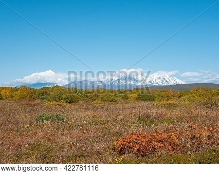 View Of The Home Volcanoes Of Kamchatka Against The Background Of Blue Sky And Autumn Forest. Clouds