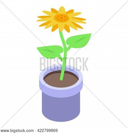 Sunflower Pot Icon. Isometric Of Sunflower Pot Vector Icon For Web Design Isolated On White Backgrou