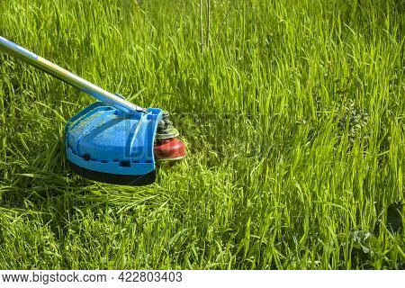 Process Of Cutting Green Grass With Trimmer. Rotating Head With Red Fishing Line Cuts Grass. Gasolin