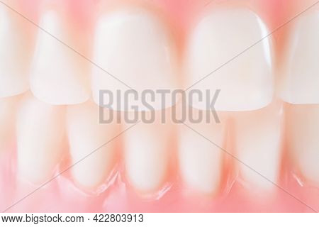 Clean White False Teeth Close Up. Macro Texture Of White Artificial Dents