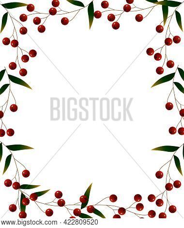 Vertical Rectangular Frame With Branches Of Red Berries. Vector Illustration Isolated On White Backg