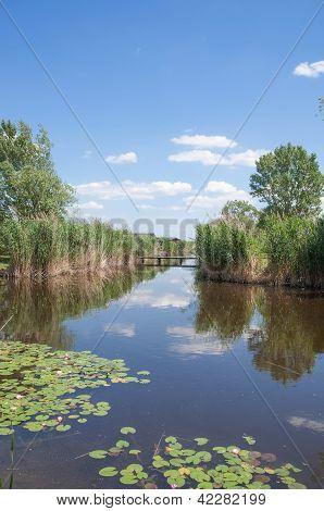 Reed belt and Fishing huts at Lake Neusiedler See,Burgenland,Austria poster