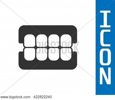 Grey False Jaw Icon Isolated On White Background. Dental Jaw Or Dentures, False Teeth With Incisors.