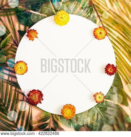 Background With Paper Card Note. Nature Trendy Decorative Design.  Flat Lay. Nature Concept. Floral