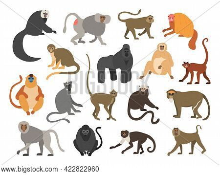 Cartoon Primates. Chimpanzee And Gorilla Monkeys. Wild Animals Set With Tails. Cute Apes Sit Or Clim