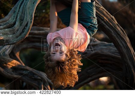Little Boy Facing Challenge Trying To Climb A Tree Upside Down.