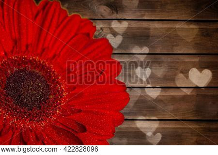 Close-up Of Half Of A Red Gerbera With Dew Drops On A Painted Wooden Background With Bokeh In The Fo