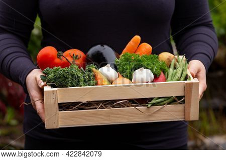 Gardener Woman Holding Wooden Box Full Of Fresh Raw Vegetables. Healthy Food.