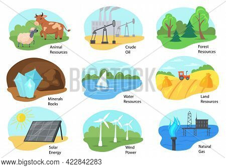 Different Types Of Natural Resources Vector Illustrations Set. Animal, Forest, Land, And Water Resou